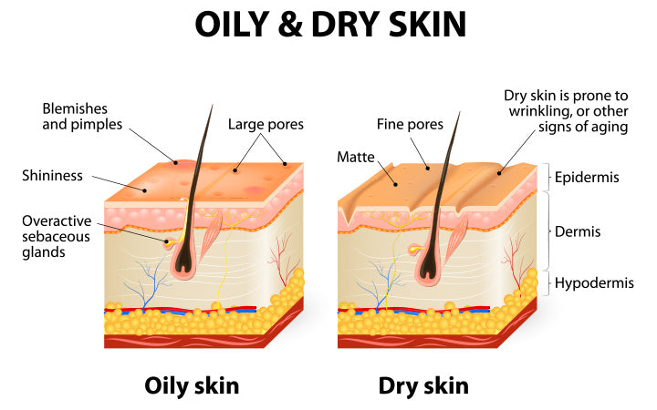 human skin types and conditions