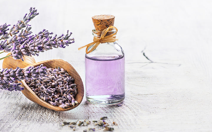 lavender oil and seeds