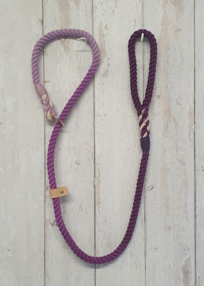 Collared Creatures Purple Ombre Dip Dyed Dog lead