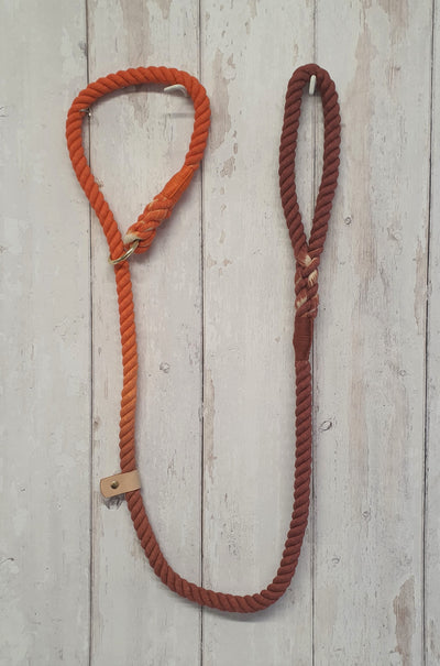 handmade-ombre-dip-dyed-lead-orange-and-brown|collared creatures