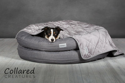 Grey Luxury Quilted Dog Blanket - Throw | Collared Creatures