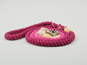 Pink Ombre Dip Dyed Dog lead - Collared Creatures