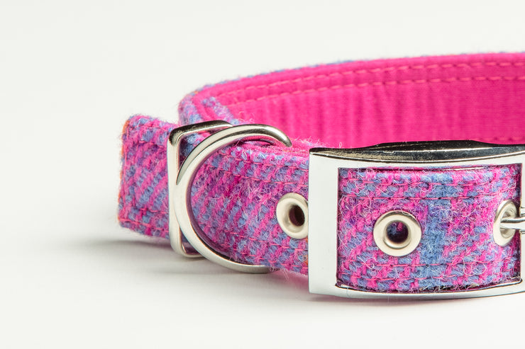 Pretty Pink Check - Collared Creatures