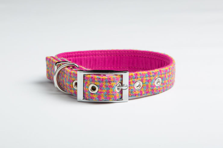 Tutti Frutti Check - Collared Creatures