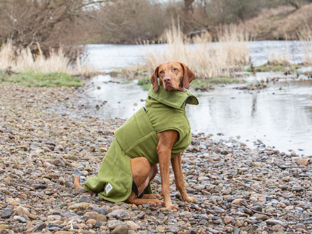 Green Perfectly Practical Dog Drying Coat - Collared Creatures