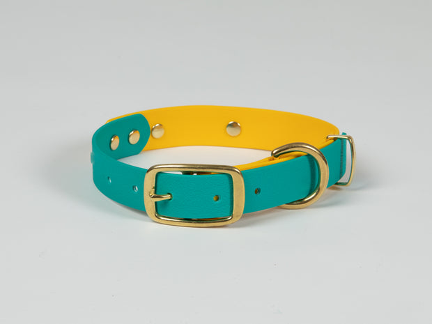 Collared Creatures Teal & Yellow Multicolour Waterproof Dog Collar