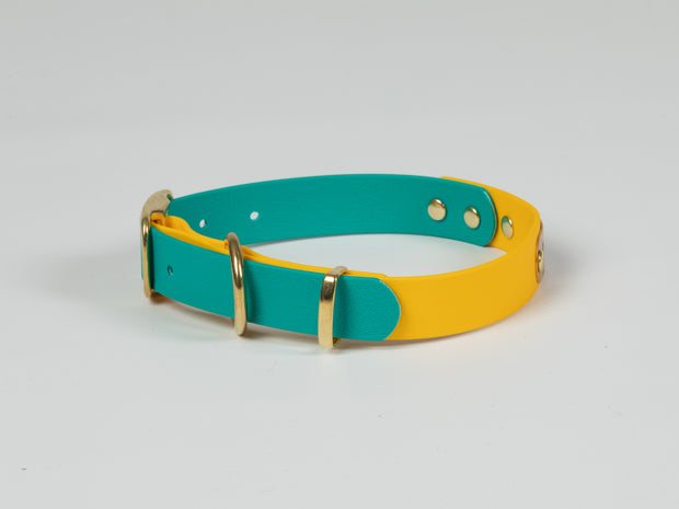 Collared Creatures Teal & Yellow Multicolour Waterproof Dog Collar  close up