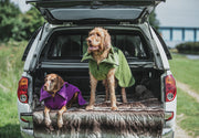Green Perfectly Practical Dog Drying Coat