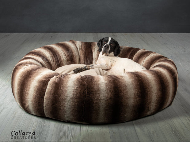 German Pointer dog looking warm and              cosy in Collared Creatures gorgeous, luxury  brown deluxe donut dog bed