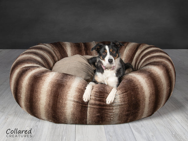 Tess who is a Collie looking warm and cosy in Collared Creatures gorgeous, luxury  brown deluxe donut dog bed