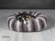 Tess who is a Collie looking warm and cosy in Collared Creatures gorgeous, luxury grey deluxe donut dog bed