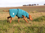 Teal superior Perfectly Practical Dog Drying