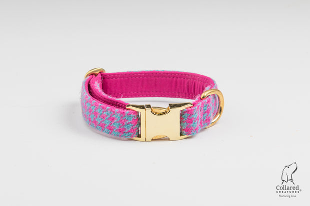 Collared Creatures Turquoise and Pink Harris Tweed Luxury Dog Collar gold clasp