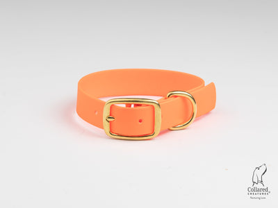 Neon Orange Waterproof Dog Collar