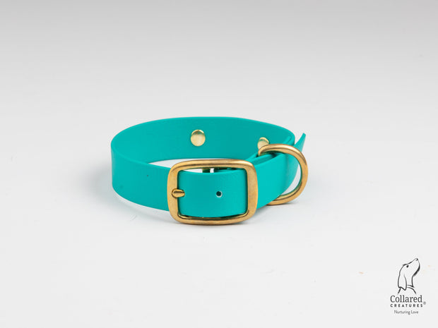 Teal Waterproof Dog Collar