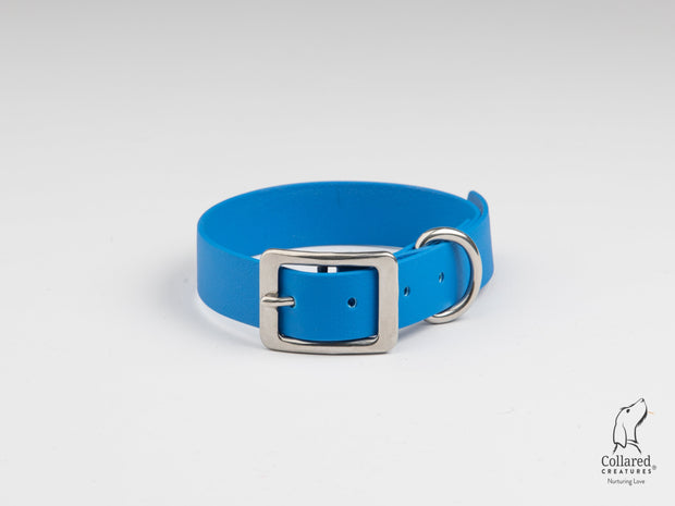 Royal Blue Waterproof Dog Collar