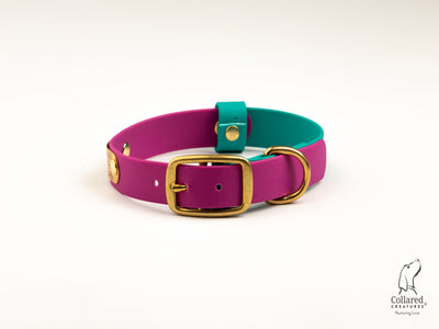 magenta-teal-multicolour-waterproof-dog-collar|collaredcreatures