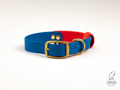 royal-blue-red-multicolour-waterproof-dog-collar|collaredcreatures