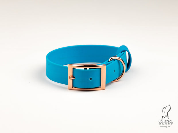 Sky-blue-waterproof-dog-collar|collaredcreatures