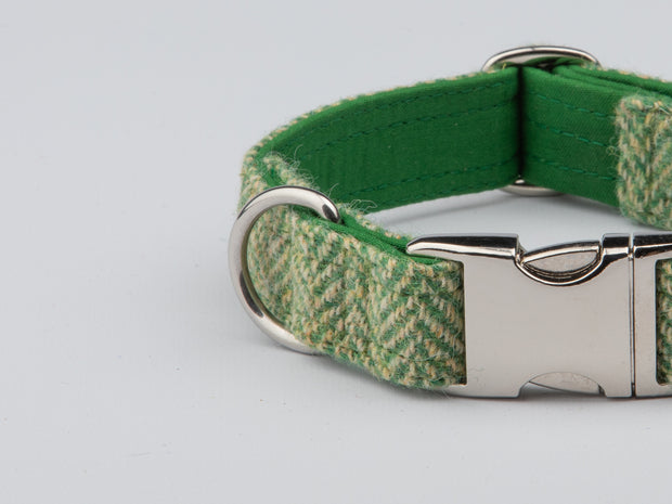 Green Herringbone Harris Tweed  Dog Collar - Collared Creatures