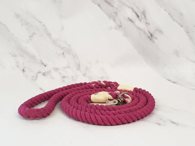 Berry Ombre Dip Dyed Dog lead
