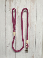 Collared Creatures Berry Ombre Dip Dyed Dog clip lead