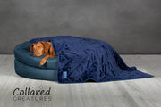Blue Deluxe Donut Bed - Collared Creatures