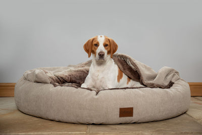 Beige Classic Comfort Cocoon Dog Bed (cushion base)