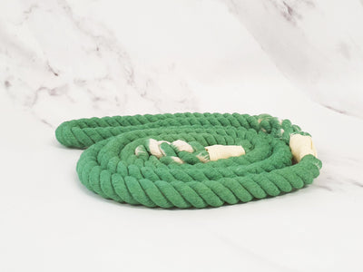 Collared Creatures Pale Green Ombre Dip Dyed Dog clip lead