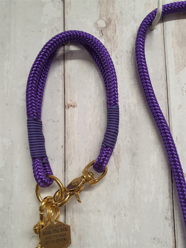 handmade-dog-collar-and-lead-with-whipping-purple|collared creatures