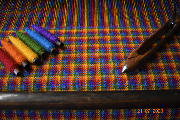 Collared Creatures Rainbow Check Harris Tweed