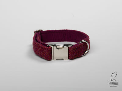 product photo of collared creatures raspberry & coral Harris Tweed dog collar