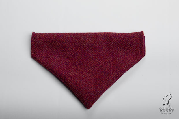 product photo of collared creatures raspberry & coral dog bandana