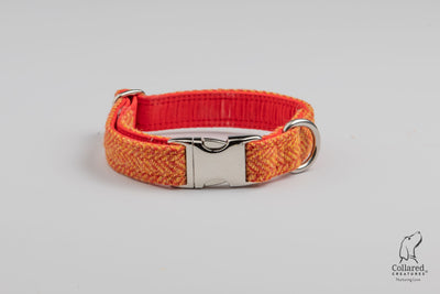 Fruit Cocktail Orange  & Yellow Herringbone Harris Tweed  Dog Collar