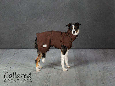 Brown Perfectly Practical Dog Drying Coat