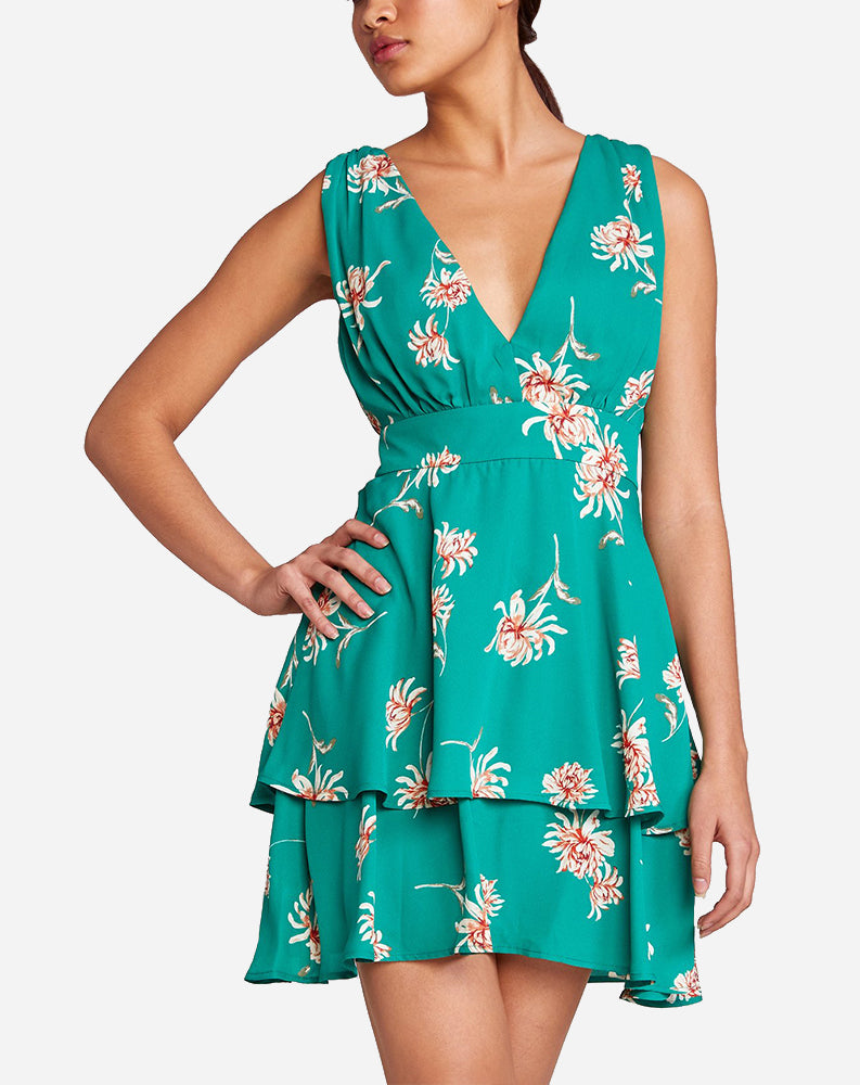 Garden Strolls Dress in Pepper Green