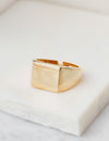 Midnight Signet Ring in Gold or Silver