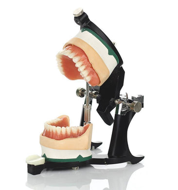 Luxury Deluxe Articulator - Mega Dental Art Supply