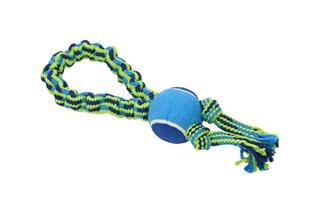 BUSTER Colour Bungee Rope Single Knot with tennis ball 33 cm