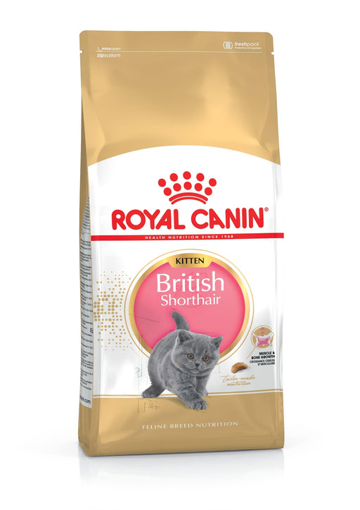 Royal Canin Feline British Shorthair Kitten Dry  2 kg