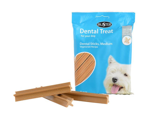 Buster Dental Treat Medium