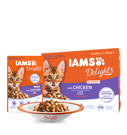 Iams Feline Delights Kitten in Gravy 12 x 85 g