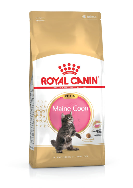 Royal Canin Feline Maine Coon Kitten Dry 10 kg