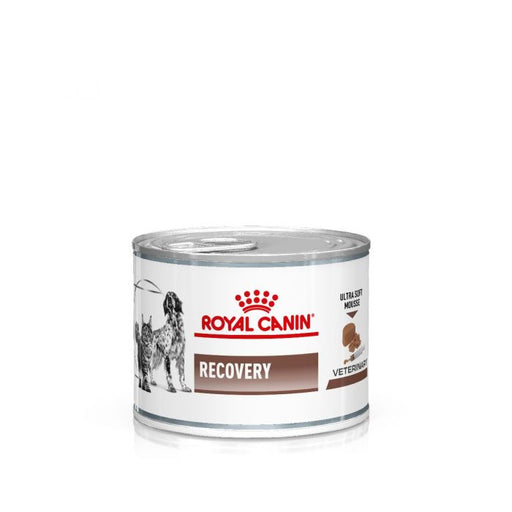 Royal Canin Canine/Feline Recovery Wet 12 x 195 g