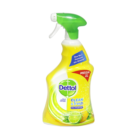Dettol Power & Fresh Advanced Citrus Spray 1L in UK