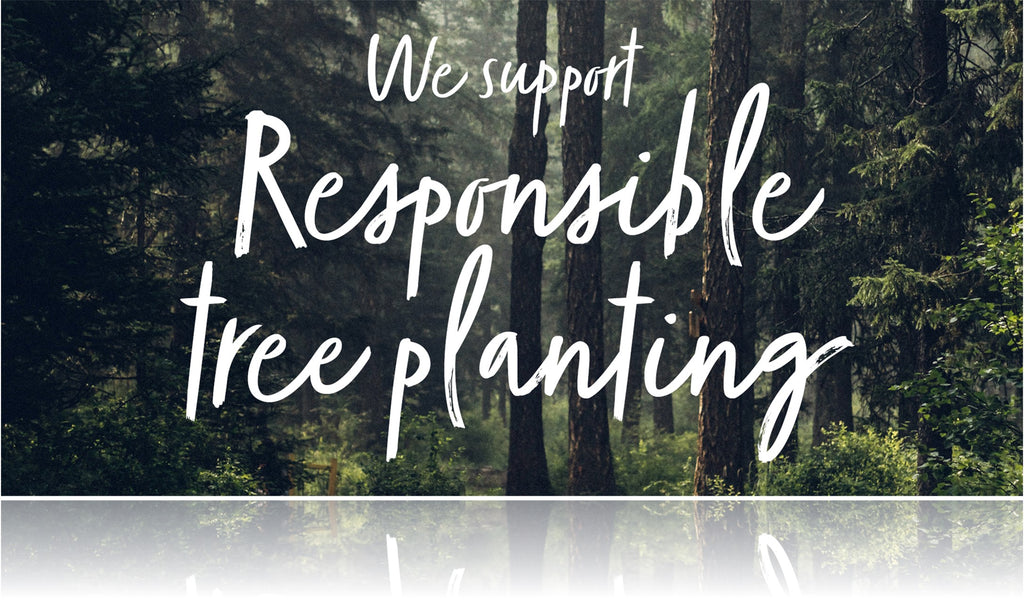 Responsible Tree Planting With Ecologi