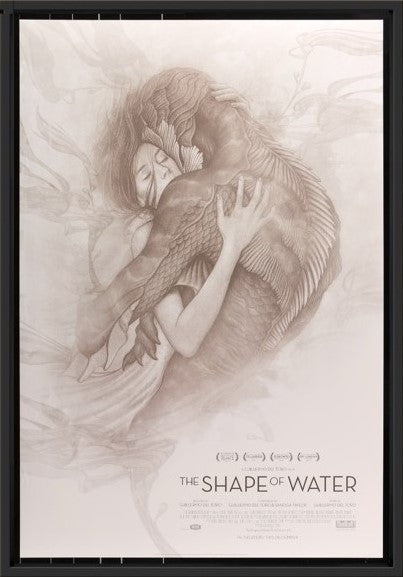 An original movie poster for the film The Shape of Water