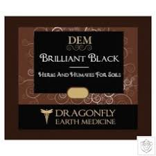 Dragonfly Earth Medicine Brilliant Black