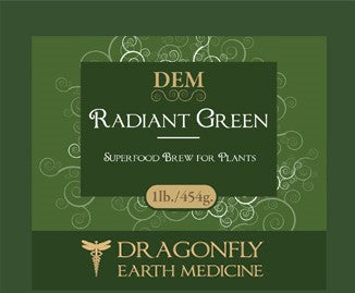Dragonfly Earth Medicine Radiant Green