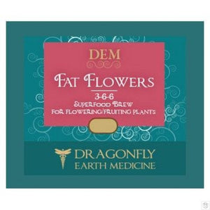 Dragonfly Earth Medicine Fat Flower